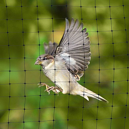 Bird Netting Protective Fencing For Gardens And Crops 7 X