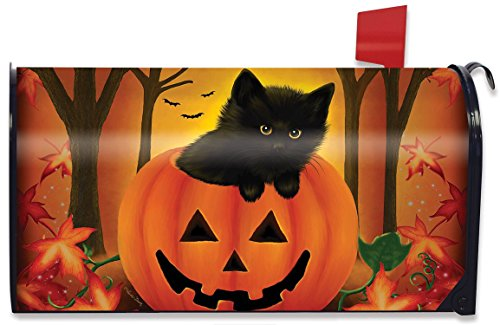 Briarwood Lane Halloween Kitten Magnetic Mailbox Cover Jack o'Lantern Holiday by Briarwood Lane
