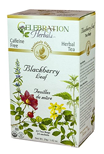 Blackberry Leaf Organic - 24 bag,(Celebration (Blackberry Leaf Tea)