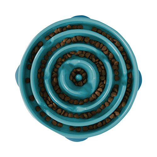 Outward Hound Slow Feeder Dog Bowl Fun Feeder Stop Bloat Bowl for Dogs by, Large, Teal