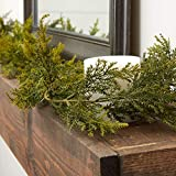 Factory Direct Craft 72' Realistic Artificial Vinyl Cedar Pine Green Garland for Holiday Home Decor