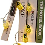 AceList 1.96 ft 20 LED Metal Pineapple String Lights, Fairy String Lights Battery Operated for Christmas Wedding Party Bedroom Birthday Indoor Garden Décor (Warm White)