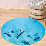VROSELV Custom carpetHawaiian Decorations Group of Dolphins in Hawaii Wildlife Underwater Animals Tropical Aquatic Nature Picture Bedroom Living Room Dorm Decor Blue Round 72 inches