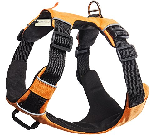 Paws & Pals Pet Harness for Dogs Cats - No-Pull Durable Padded Nylon Mesh Vest - Easy Secure Control (Large, Orange)