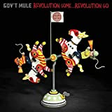 Revolution Come... Revolution Go [2 CD][Deluxe Edition]