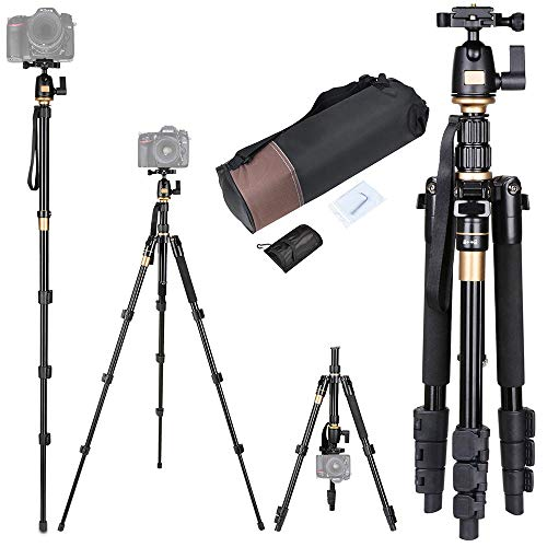 Quick Platform Release (60 Inch Compact Camera Travel Tripod 360 Degree Swivel Ball Head 1/4 Quick Release Plate Carry Bag 5 Section Height Adju)