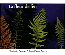 La Fleur De Feu Elisabeth Beurret Jean Pierre Brazs 9782940408061