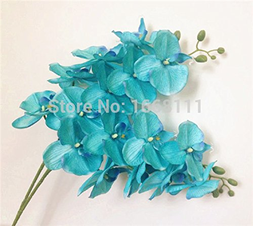 5pcs-Teal-Blue-Color-Phalaenopsis-Butterfly-Moth-Orchid-8-Flower-headsPiece-Orchids-for-Wedding-Decorative-Artificial-Flowers