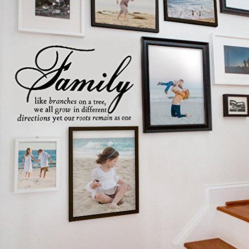 Family Like Branches On A Tree vinyl lettering wall sayings home Decal Quote Decals Wall Decorations for Living Room (The Picture. No photos included) (Photo Wall Decal)