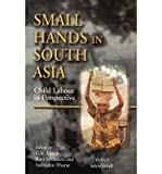 img - for Small Hands in South Asia: Child Labour in Perspective book / textbook / text book