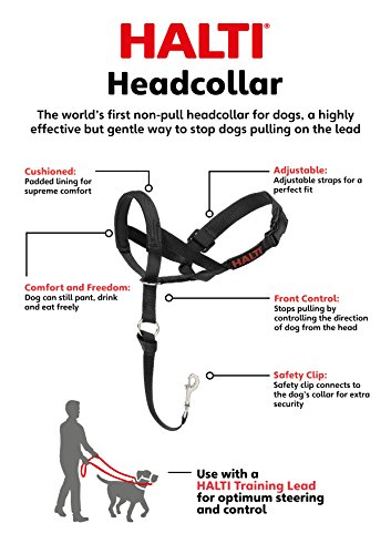 Image of The Company of Animals - HALTI Headcollar - Adjustable and Padded - No Pull Training Tool for Dogs on Walks - Includes Free Training Guide - Size 1 - Black
