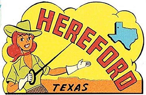 Hereford Texas Vintage Decal Sticker Souvenir Skateboard Laptop