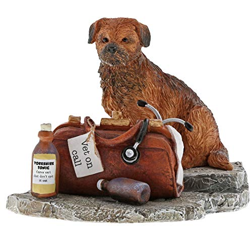 Kitchy and Co A29474 Vet On Call Border Terrier Dog Figurine (Figurine Terrier Dog Border)