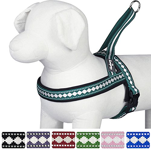 "Blueberry Pet 7 Colors Soft & Comfy Jacquard Padded Dog Harness, Chest Girth 25.5"" - 31.5"", Teal Blue, M/L, Reflective Adjustable Harnesses for Dogs"