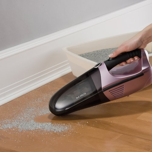 Buy vacuum for pet hair and stairs