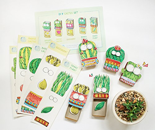 DIY Cactus Matchbox-cards - Set of 5 - Do It Yourself Plant Greeting Cards - Assorted Boxed Card Set for Her, for Mom - All Occassion Cards - - Minion Diy