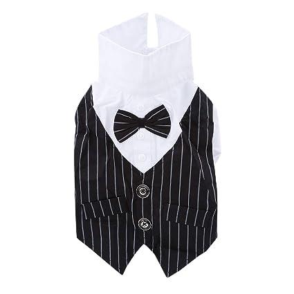 GloryMM - Chaleco para disfraz de perro, con pajarita negra, traje ...