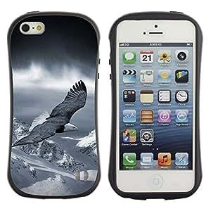 Suave TPU GEL Carcasa Funda Silicona Blando Estuche Caso de protección (para) Apple Iphone 5 / 5S / CECELL Phone case / / flying eagle America patriotic bald snow /