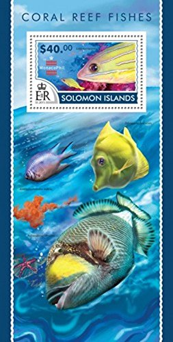 (Withdrew 02-28-19-Solomon Islands - 2015 Coral Reef Fishes - Souvenir Sheet - 19M-754)