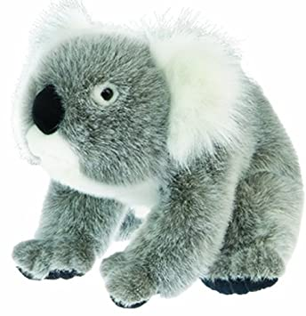 "Koala Cuddlekin 12"" by Wild Republic"