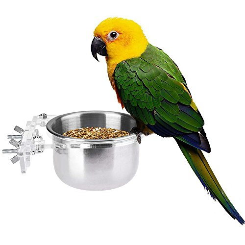 Yunt Bird Food Feeding Dish Feeder Bowl With Holder Hook ...