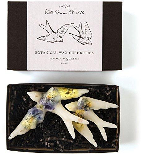 Rosy Rings Botanical Wax Curiosities - Viola Queen Charlotte Birds