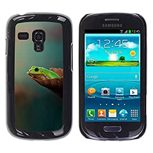 Paccase / SLIM PC / Aliminium Casa Carcasa Funda Case Cover para - Wondering Think Pastel Green Forest - Samsung Galaxy S3 MINI NOT REGULAR! I8190 I8190N
