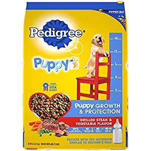 PEDIGREE Puppy Growth & Protection Dry Dog Food Grilled Steak & Vegetable Flavor, 16.3 lb. Bag