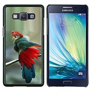 Plumas del trullo rojo azul Pájaro tropical- Metal de aluminio y de plástico duro Caja del teléfono - Negro - Samsung Galaxy A5 / SM-A500