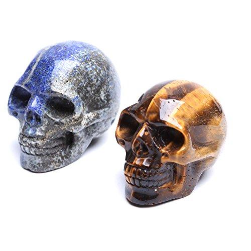 yujianni Healing Crystal Stone Human Reiki Skull Figurine Statue Sculptures Mixed Stone(Pack of 2) 2'' (Tiger Eye&Lapis Lazuli)