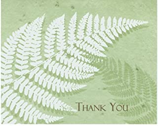 product image for Grow A Note® Thank You Fern 2011 Cards 5-Pack