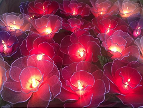 String Lights 20 Carnation Purple-Pink Tone Flower Fairy String Lights Wedding Party Floral Home Decor 3.5m by Thai Decored