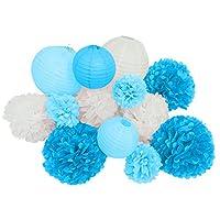 Paper Jazz 13pcs decorative paper pom pom lantern for wedding birthday baby shower graduation meeting event party decoration (BLUE WHITE)