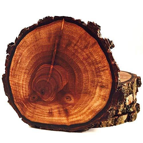 (Rare Walnut Tree Wood Coasters with Bark 4-Pack)