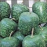 15 Seeds Apple Gourd