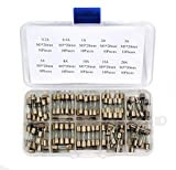 IRISFLY 100pcs 5x20mm Fast-blow Glass Fuses Quick Blow Car Glass Tube Fuses Assorted Kit Amp 0.2A, 0.5A,1A,2A,3A,5A,8A,10A,15A,20A