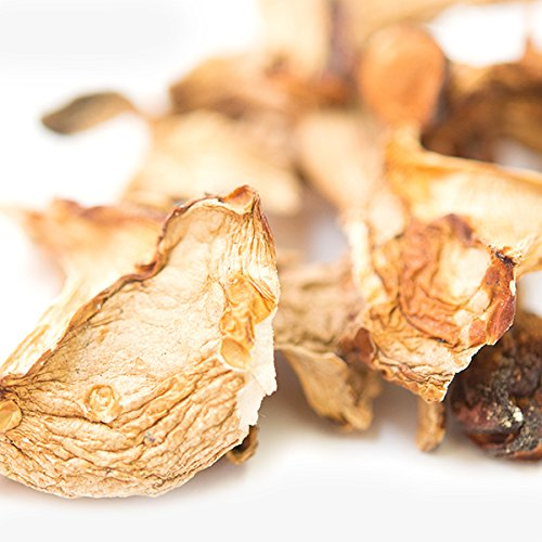Spice Jungle Chanterelle Mushrooms - 16 -
