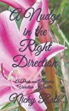 A Nudge in the Right Direction: A Pride and Prejudice Variation - Novella
