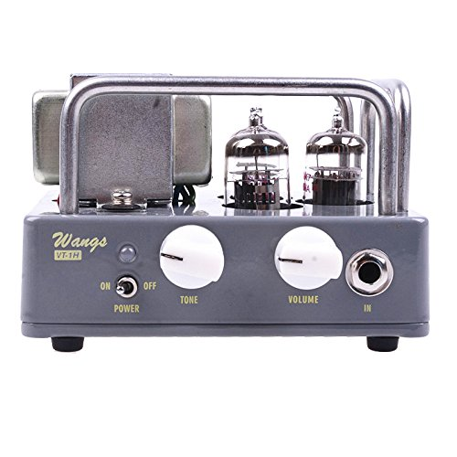 Electric All Tube Guitar Amplifier Head Biyang Wangs VT-1H AMP Head Adjust Volume And Tone by Biyang