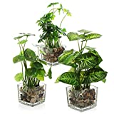 MyGift Set of 3 Artificial Plants, Faux Tabletop Greenery w/ Clear Glass Pots