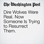 Dire Wolves Were Real. Now Someone Is Trying to Resurrect Them. | Karin Brulliard