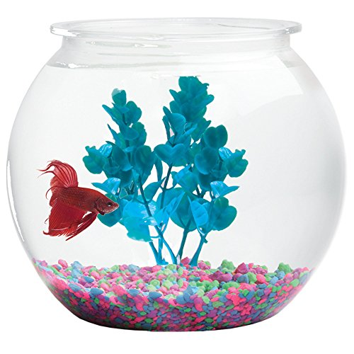 Koller Products 3-Gallon Fish Bowl by Koller Products