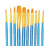StarVast Painting Brushes, 20pcs Professional