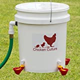 Automatic Premium Chicken Waterer Bucket Kit - NEW VERSION CUPS (from Holland) - Auto Float Valve (Made In USA) (2 Cups)