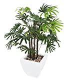 Closer2Nature Artificial 3ft Lady Palm Tree - Portofino Planter Not Included