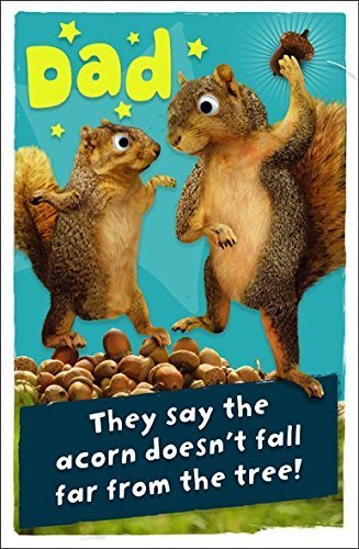 Uk Greetings Dad Fold Out Birthday Card Crazy Squirrels 825 X