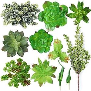 Artificial Succulent Plants Realistic Look 10 Pack 1