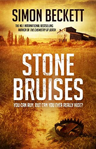 book cover of Stone Bruises