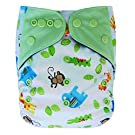 Charcoal Bamboo AIO All-in-one Cloth Diaper with Pocket (Animals)