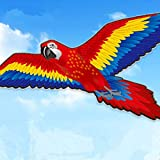 AMLJM Big Parrot Kite Stereo Bird Kites High Quality Parakeets Kite Easy To Fly Outdoor Fun Sport Toys for Children and Adults